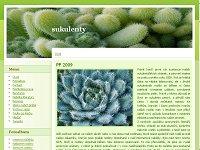 kaktusy3.jpg